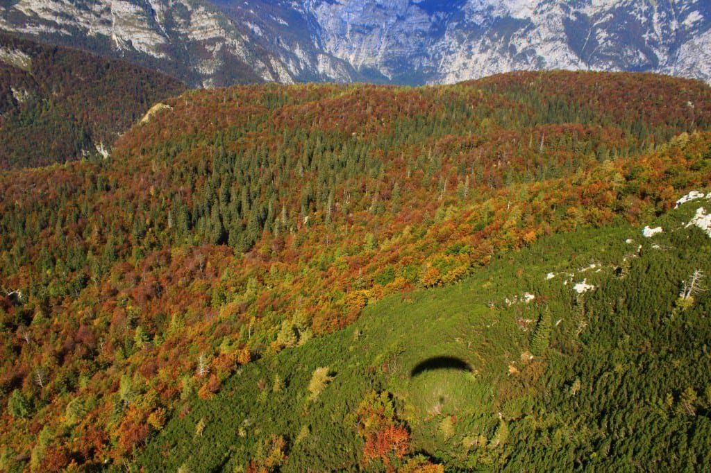 Paragliding i Bohinj, Slovenia