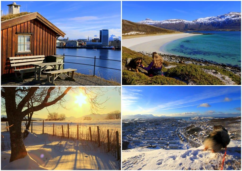 Bodøbilder6