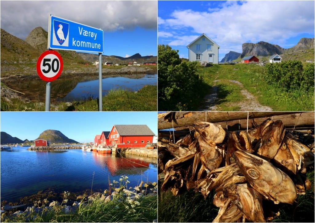 Bodø og omegn 20161