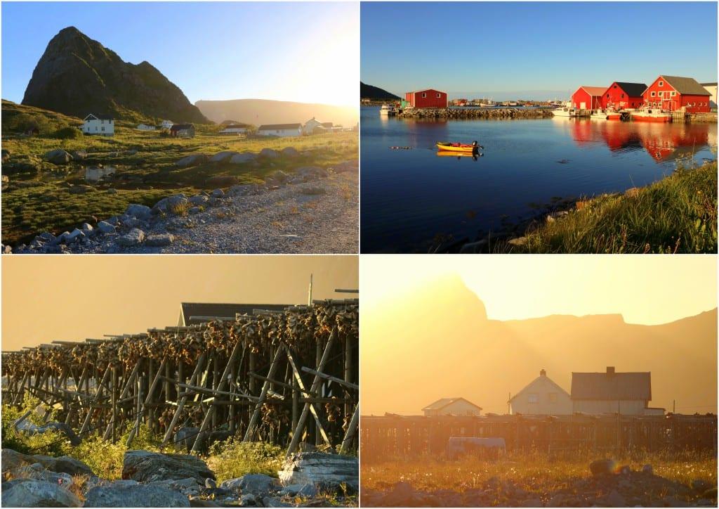 Bodø og omegn 20162