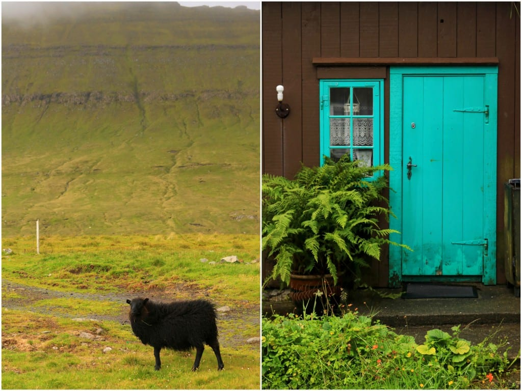 Færøyene 20161
