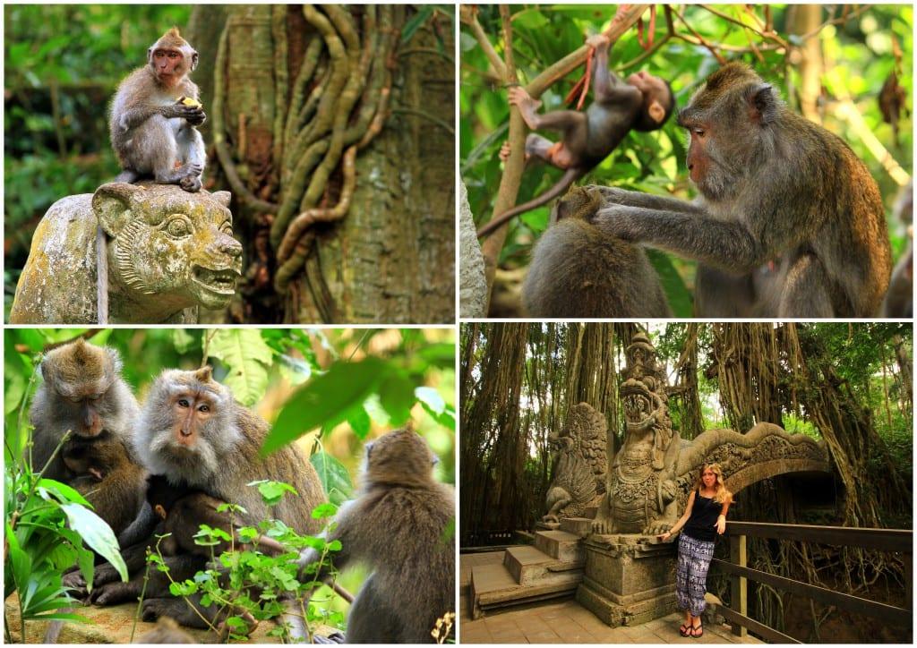 indonesia-20155