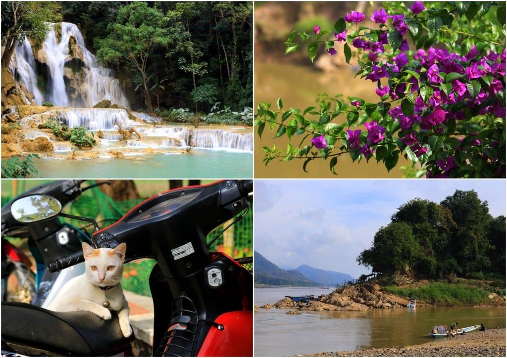 Laos 20166