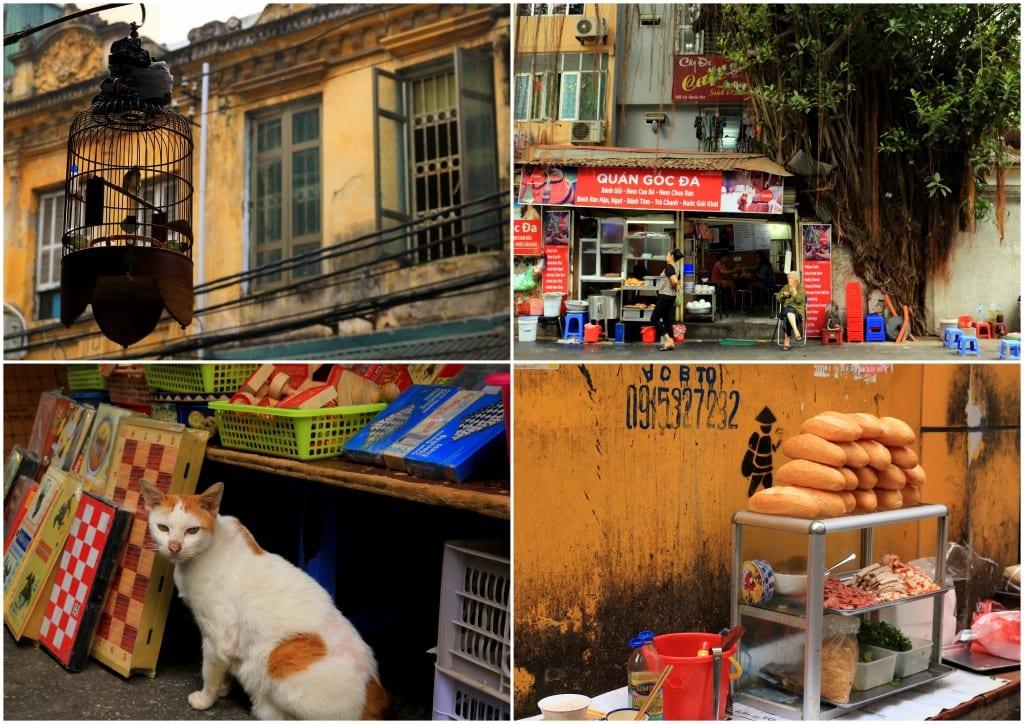 vietnam-20166
