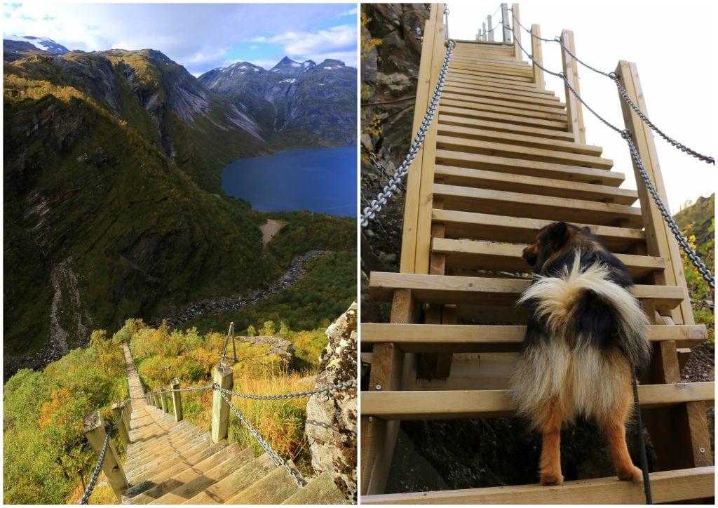 bygge igjen trappetrinn